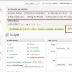 WordPress jako CMS - Opcje Ekranu