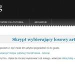 WordPress strona z własnym formularzem - tryb 2