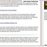 Strona dwukolumnowa - przykład