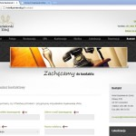 Rys. 2b. Front-end witryny w języku polskim