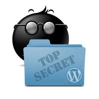 WordPress Specjalista