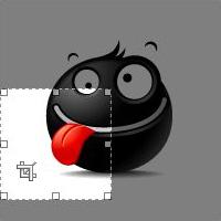 Kadrowanie zdjęć WordPress
