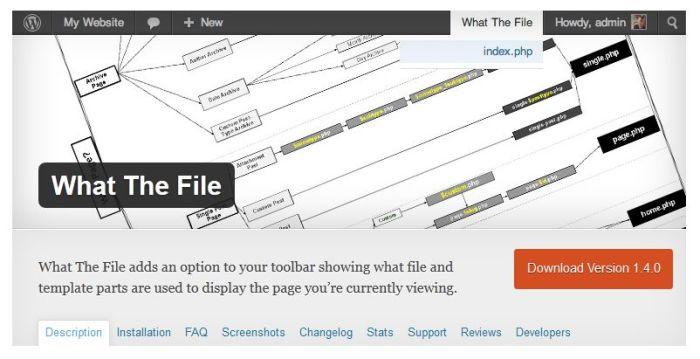 What the file - WordPress plugin