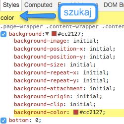 przeszukiwanie stylów w Chrome Developer Tools
