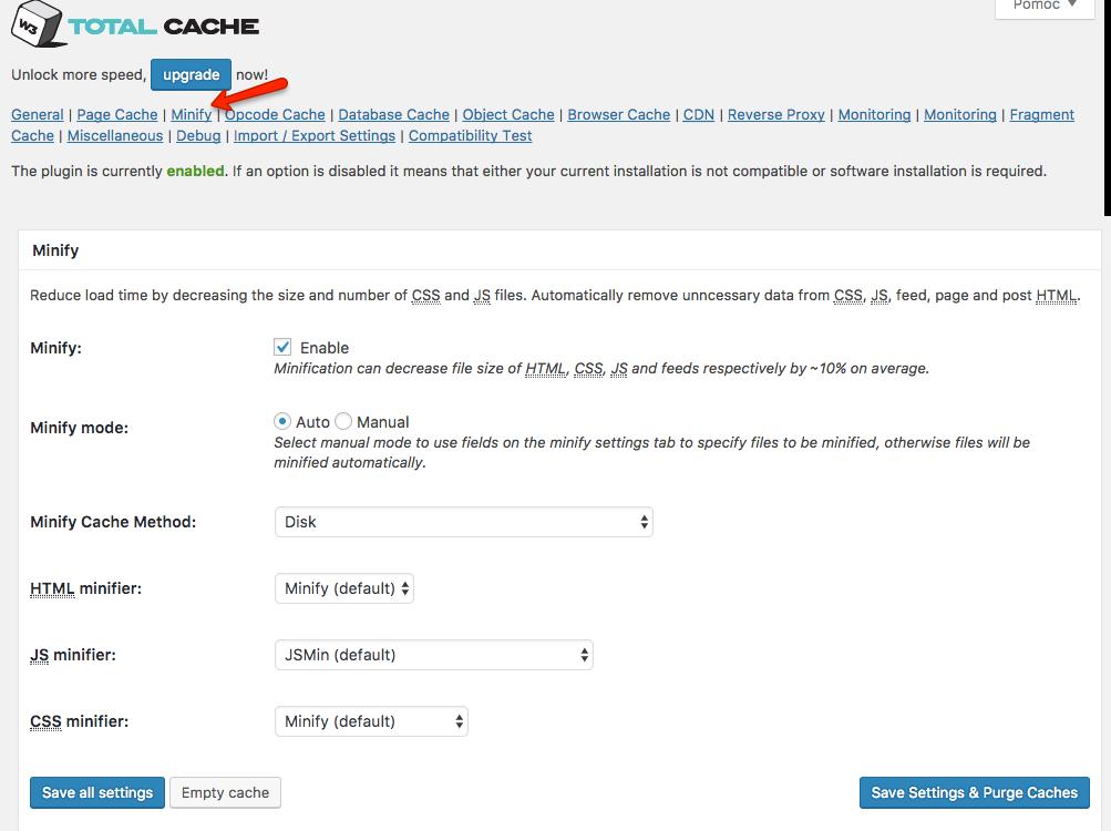 W3 Total Cache i sekcja Minify