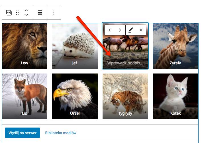 Dodawanie podpisów zdjęć w galerii w WordPressie